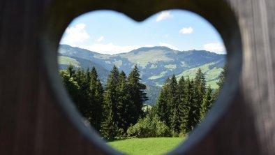 Blick auf die umliegende Bergwelt