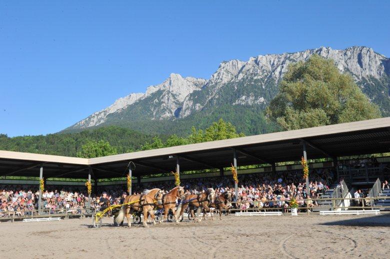 Fohlenhof-Arena in Ebbs in Tirol (Foto: Fohlenhof Ebbs / Christian Kapfinger)