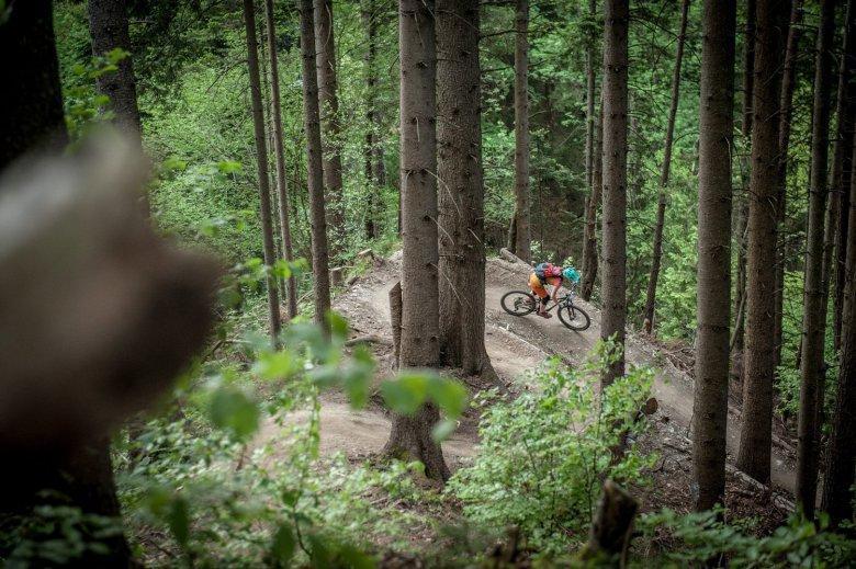 """Das """"Reshaping"""" hat dem Hungerburg Trail richtig gut getan. Foto: Rene Sendlhofer-Schag/www.bikefex.at"""