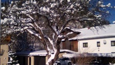 winter 2016 032