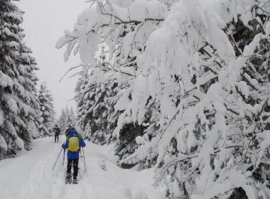 Schneeschuhwandern bei Hochfilzen im Pillerseetal. (Foto: Tirol Werbung)