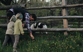 Urlaub auf dem Bauernhof in Osttirol