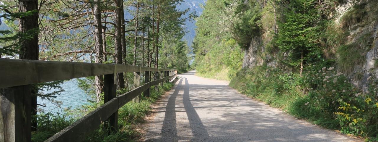 Rolli-Wanderung am Achensee