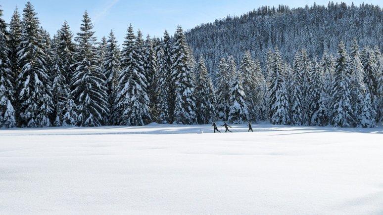 Langlaufen in Seefeld, © Tirol Werbung / Aitzetmüller Johannes