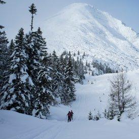 Skitourengehen, © Tirol Werbung/Martina Wiedenhofer