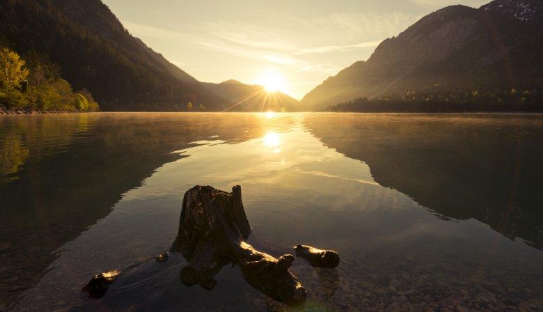 Morgenstimmung am Plansee (c) Naturparkregion Reutte/ Robert Eder
