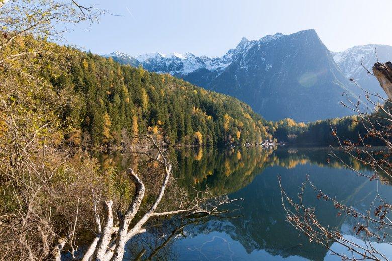 Algen machen den Piburger See vor allem in Frühling und Sommer grün. Das bedeutet, dass es sich dabei um einen relativ nährstoffreichen See handelt. Foto: Mario Webhofer