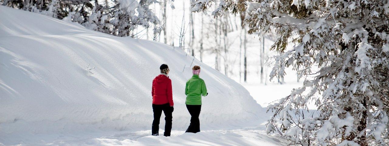 Winterwanderung in Waidring, © Andreas Langreiter