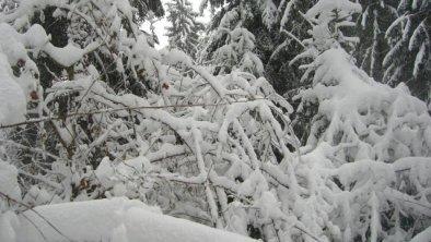 MÜLLNERHAUS Umgebung Winter, © Silvia_Wurm_Müllnerhaus