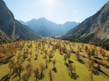 Der Große Ahornboden ist zur Herbstzeit ein beliebtes Ausflugsziel. Foto: Tirol Werbung