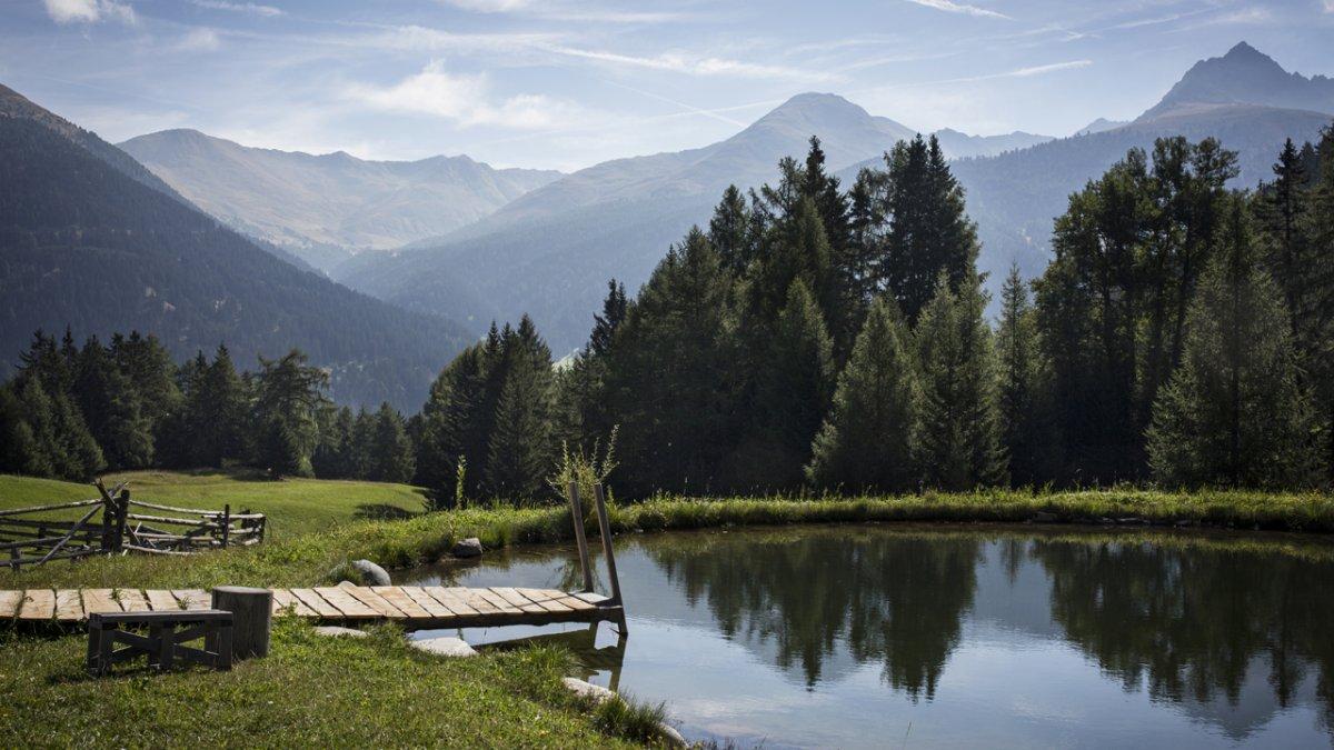 An warmen Sommertagen hoch willkommen – der hofeigene Teich mit Badesteg., © Tirol Werbung/Lisa Hörterer