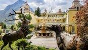 https://images.seekda.net/AT_MAU_ALPENROSE/Alpenrose_Hotelansicht.jpg
