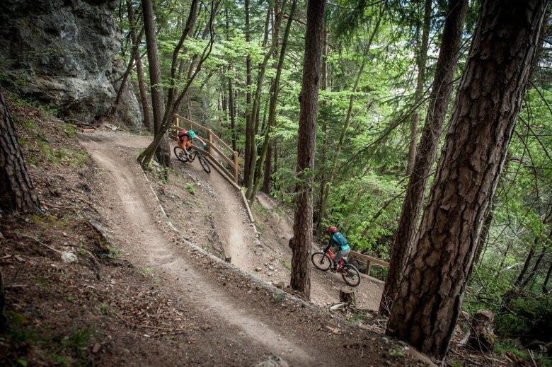 Kurvenreich geht es durch einen märchenhaften Wald. Fotos: Rene Sendlhofer-Schag/www.bikefex.at