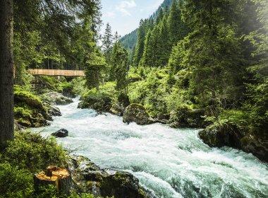 Ort: Neustift, Stubai Tirol|© TVB Stubai Tirol/Andre Schönherr