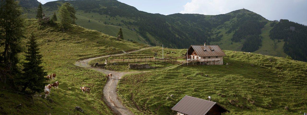 Bergalm im Rofan, © Tirol Werbung Jens Schwarz