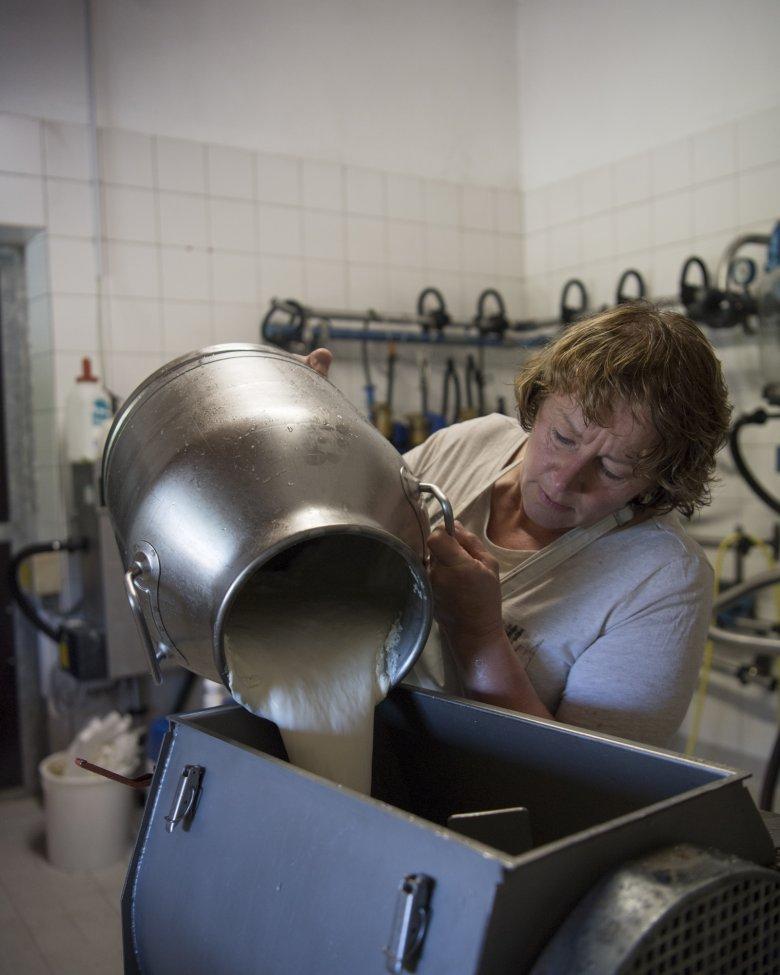 45.000 Liter Milch werden jeden Sommer verarbeitet.