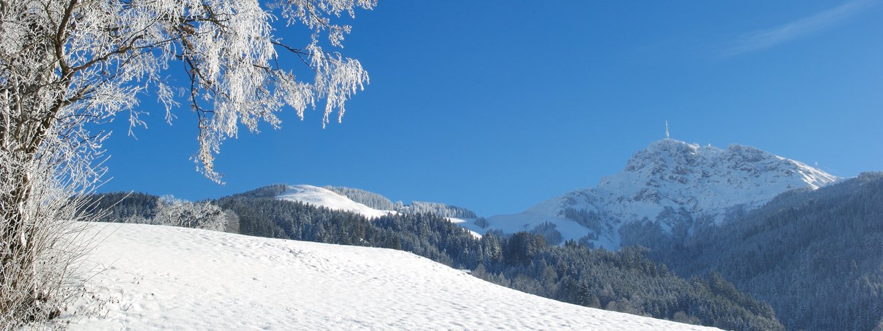 Winterwanderung am Gruttenweg, © Albin Niederstrasser