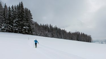 Langlaufen in Osttirol, © Tirol Werbung/Heinzlmeier Bert & Monika Höfler