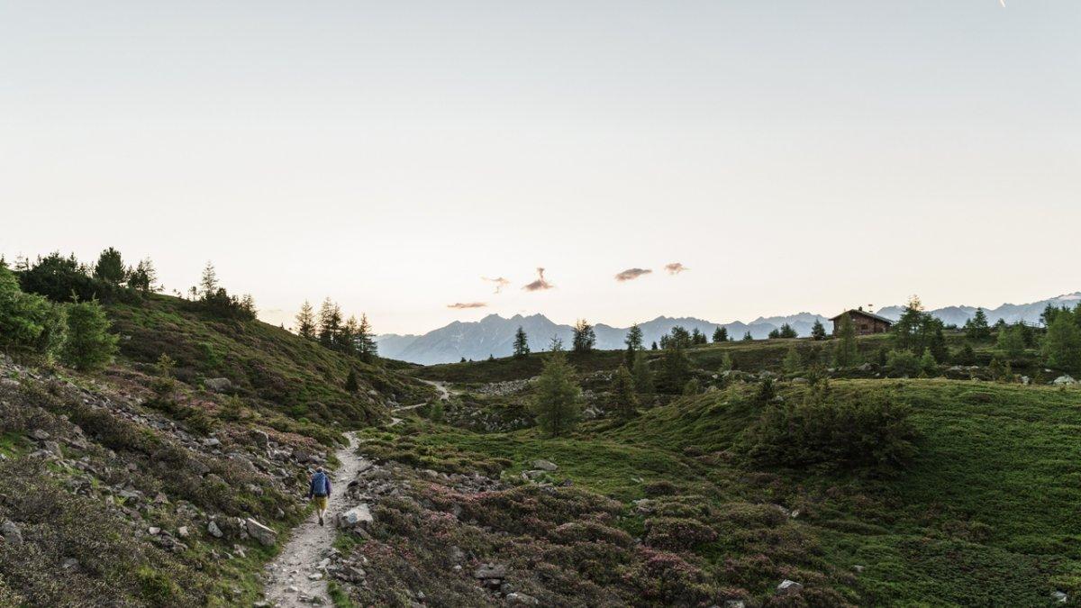 Der Zirbenweg: Ein unschwieriges Höhenweg-Erlebnis