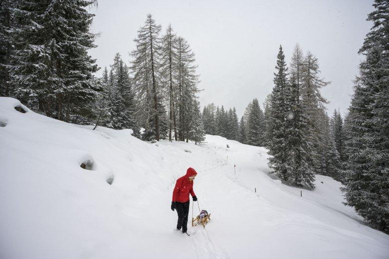 In Tirol gibt es für jeden die passende Rodelbahn. ©Tirol Werbung / Höhn Sebastian