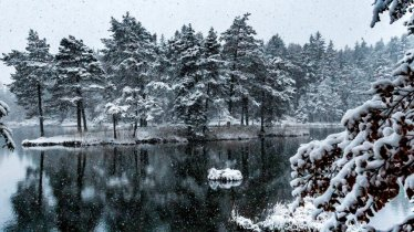 Winterwanderung Mösern, © Olympiaregion Seefeld