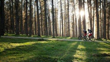 Riding near Ehrwald, © Tiroler Zugspitz Arena/U. Wiesmeier
