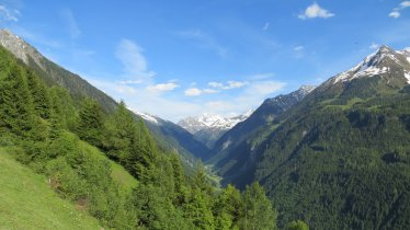Blick in den vorderen Zillergrund, © Hochgebirgs-Naturpark Zillertaler Alpen