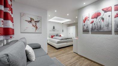 Zimmer V1