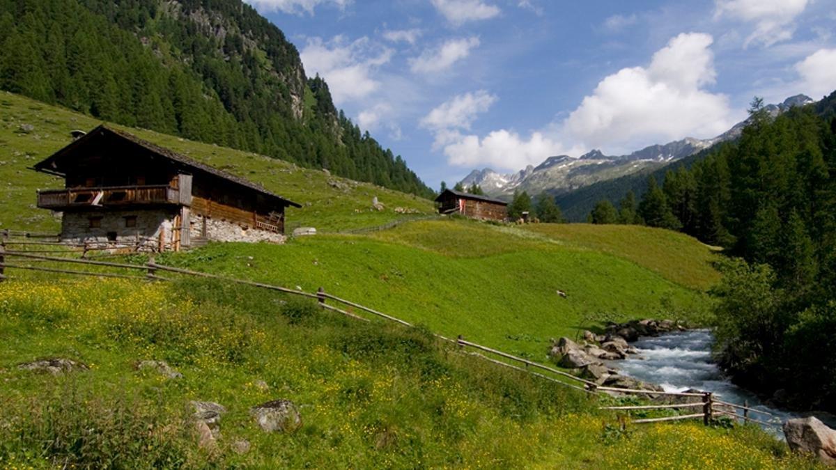 Edelweiß und Almrosen, Steinadler und Gämsen? Im größten Nationalpark Österreichs gibt es das alles, und zwar in geradezu verschwenderischer Fülle., © Urlaubsregion Defereggental