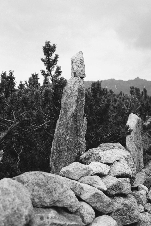 Traditionelle Bauweise: Die Trockensteinmauern rund um die Zeischalm halten auch ohne Mörtel.