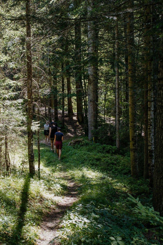 Waldbaden-Seefeld