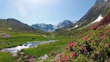 Bei der Fundusalm unterhalb des Wenderkogels, © Ötztal Tourismus / Isidor Nösig