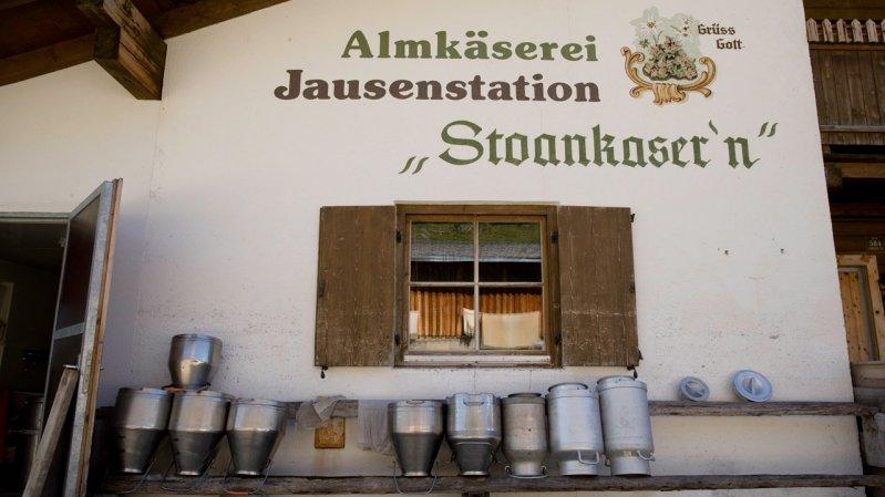 Almkäserei Stoankasern, © Tirol Werbung / Maren Krings