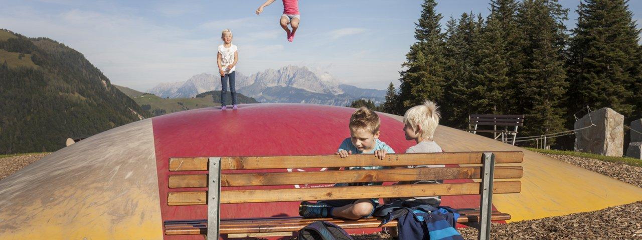 Timoks Alm, Fieberbrunn, © Tirol Werbung