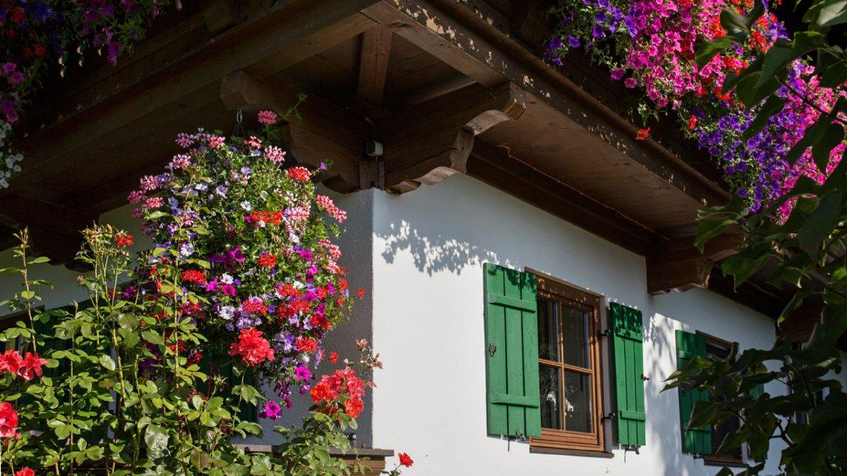 Die Geranien und Petunien an den Balkonen sind Maria Fegers Ein und Alles., © Tirol Werbung/Lisa Hörterer