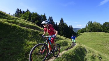 Kitzbüheler Alpen-Rundtour: Möslalm, © Norbert Eisele-Hein
