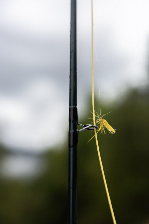 Es gibt tausende unterschiedliche Fliegen und Fliegenfischer sind besonders darauf bedacht sie nicht zu verlieren.