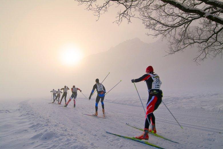 Internationaler Dolomitenlauf. Foto: TVB Osttirol / Zlöbl