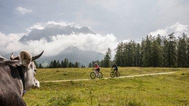 Mit dem Mountainbike zur Tuftlalm, © Zugspitz Arena Bayern-Tirol/Joe Hoelzl