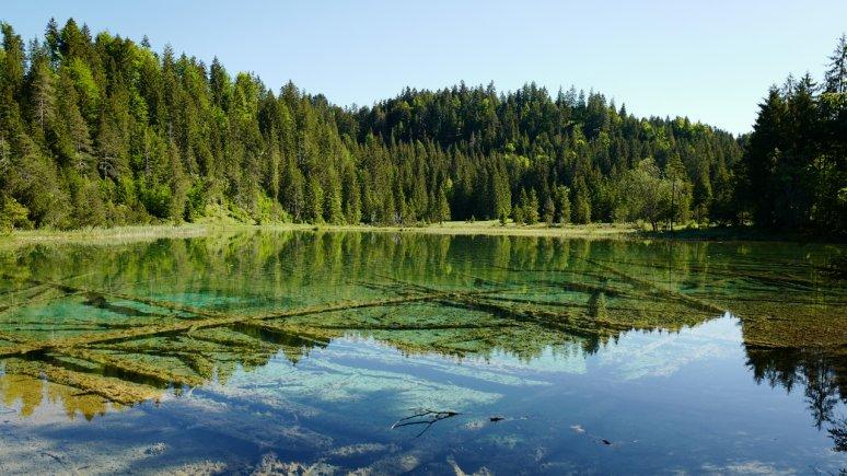 Riedener See, © Naturparkregion Reutte/Ronald Petrini