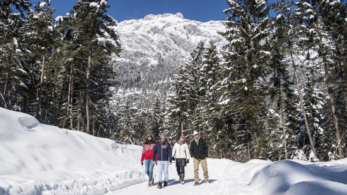 Winterwandern in der Region Hall-Wattens, © TVB Hall-Wattens