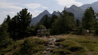 Adlerweg- Etappe 13: Zirbenweg, © Tirol Werbung/Jenewein Markus