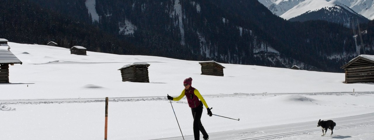 Langlaufen mit Hund, © Tirol Werbung/Lisa Hörterer