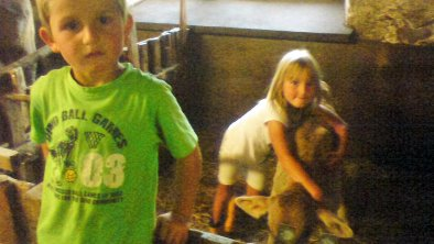 Kinder am Bio Berghof im Kuhstall