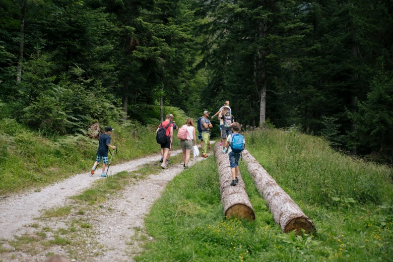 Die Kinder stehen beim Wandern im Vordergrund.