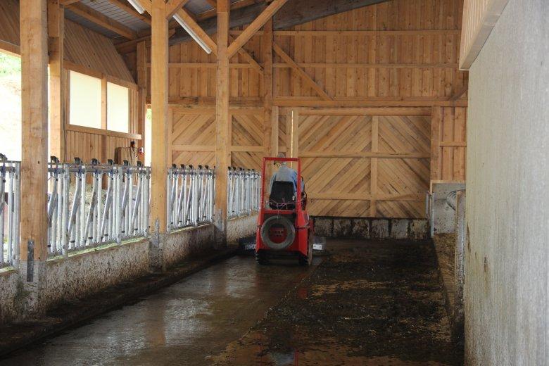 Während die Kühe beim Melken sind, wird der Stall gesäubert