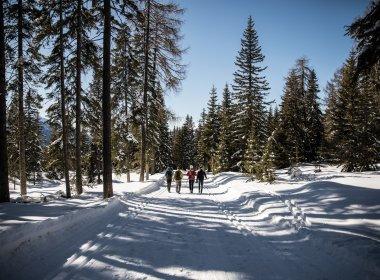 Tirolwerbung-Winderwanderung-2137