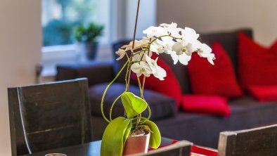 Apartment Zittera -  Impressionen Innen 11