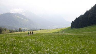 Radfahren bei Kössen, © Tirol Werbung / Soulas Oliver