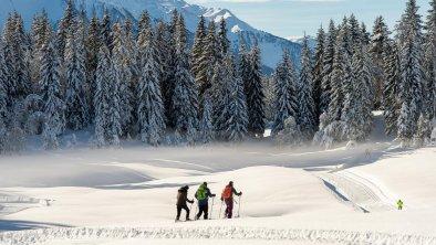 Schneeschuhwandern und Langlaufen in Mösern, © Olympiaregion Seefeld - J.Geyer